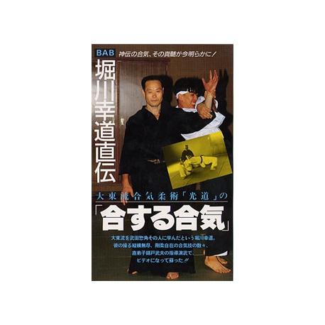 dvd daito aikido nishikido